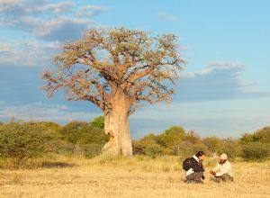Nxai Pan Bushman walk, Botswana