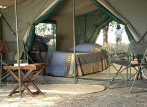 Tent on safari