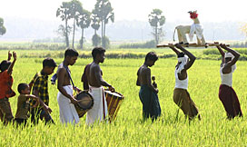 Indigenous woman, Malabar, India