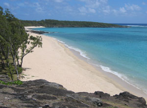 The beach at Tekoma