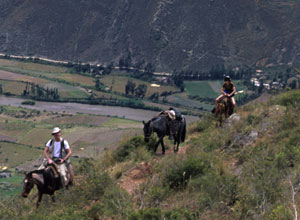 Horse riding in the Sacred Valley